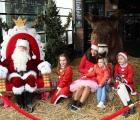 Sjlaagboom-goede-doel-actie-21-12-2019-foto-31