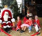 Sjlaagboom-goede-doel-actie-21-12-2019-foto-32